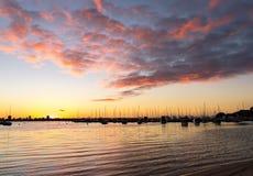 Beau lever de soleil au-dessus de rivière de cygne images stock