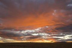 Beau lever de soleil coloré vibrant image libre de droits
