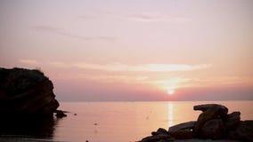Beau lever de soleil d'or de coucher du soleil sur la mer, calme complet, mouettes de vol clips vidéos