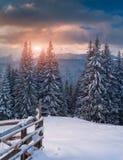 Beau lever de soleil d'hiver en montagnes Photographie stock libre de droits