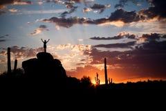 Beau lever de soleil de désert Photos stock