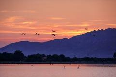 Beau lever de soleil sur l'île de la Sardaigne photos stock