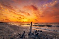 Beau lever de soleil vibrant sur la plage image stock