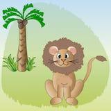 Beau lion Photos libres de droits