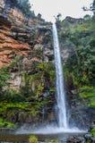 Beau Lonecreek reculé et majestueux ou chutes solitaires de crique, cascade en Sabie Mpumalanga South Africa photographie stock