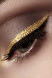 Beau macro tir d'oeil femelle avec le maquillage cérémonieux La forme parfaite des sourcils, l'eye-liner et le joli or rayent sur images libres de droits