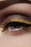 Beau macro tir d'oeil femelle avec le maquillage cérémonieux La forme parfaite des sourcils, l'eye-liner et le joli or rayent sur Photographie stock