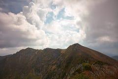 Beau matin en montagnes carpathiennes Images libres de droits