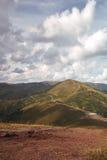 Beau matin en montagnes carpathiennes Image stock