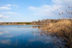 Beau matin sur la rivière photo libre de droits