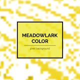 Beau Meadowlark Square Background Photo libre de droits
