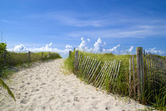 Beau Miami Beach Images libres de droits