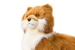Beau mignon de jouet de Dolly Dog sur le fond blanc Images stock