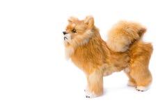 Beau mignon de jouet de Dolly Dog sur le fond blanc Images libres de droits