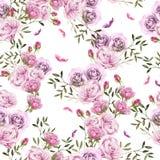 Beau modèle coloré lumineux d'aquarelle avec Rose Flowers Photo libre de droits