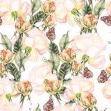 Beau modèle coloré lumineux d'aquarelle avec Rose Flowers a Photographie stock libre de droits