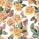 Beau modèle coloré lumineux d'aquarelle avec Rose Flowers a Photographie stock