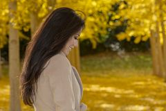 Beau modèle coréen Posing In de brune un champ de Leav jaune Photos stock