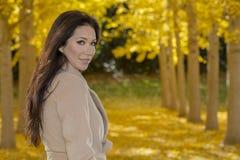 Beau modèle coréen Posing In de brune un champ de Leav jaune Photographie stock libre de droits