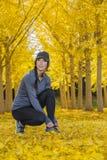 Beau modèle coréen Posing In de brune un champ de Leav jaune Image stock