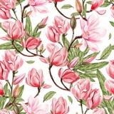 Beau modèle d'aquarelle avec la magnolia de fleurs Image stock