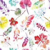 Beau modèle d'aquarelle des feuilles Fait main peint belle empreinte sans couture de fond de texture Photos stock