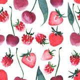Beau modèle de fraise de framboise de cerise de baies Photographie stock