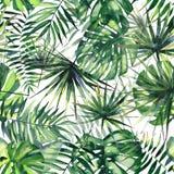 Beau modèle floral merveilleux tropical de fines herbes vert lumineux d'été d'Hawaï d'une aquarelle tropicale de paumes illustration de vecteur