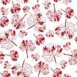 Beau modèle fou d'aquarelle des feuilles Fait main peint Image libre de droits