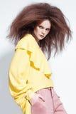 Beau modèle roux posant dans le tir de studio Images stock