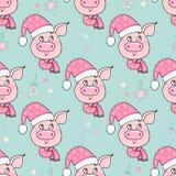 Beau modèle sans couture de porc mignon avec le chapeau photo libre de droits