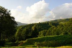Beau Mountain View carpathien dans l'heure d'été photographie stock