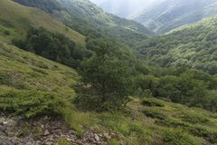 Beau Mountain View des collines sur le chemin à la hutte d'Eho Le Troyan Balkan est exceptionnellement pittoresque et offre a images libres de droits