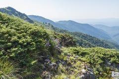 Beau Mountain View des entrées sur le chemin à la hutte d'Eho Le Troyan Balkan est exceptionnellement pittoresque et offre a image stock