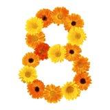 Beau nombre floral 8 Image libre de droits
