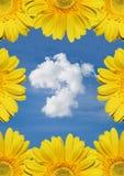 Beau nuage avec des fleurs photos libres de droits