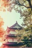 Beau palais impérial à Tokyo, Japon (image filtrée pro images stock