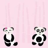 Beau panda Photos stock