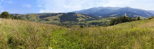 Beau panorama des montagnes carpathiennes en été dans la perspective d'herbe verte, de ciel bleu et de nuages blancs légers Image libre de droits