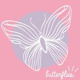 Beau papillon Images stock