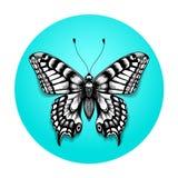 tribal de bleu de noir de tatouage de papillon illustration de vecteur illustration du retrait. Black Bedroom Furniture Sets. Home Design Ideas