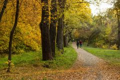 Beau parc d'automne en lequel les gens marchent photographie stock libre de droits