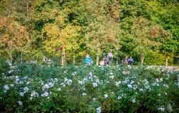 Beau parc de Belmontas photo libre de droits