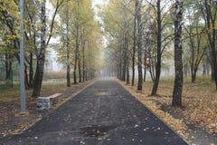 beau parc en automne en retard images stock