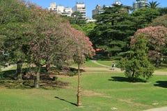 Beau parc public avec des arbres de floraison dans la région de Palerme de Buenos Aires, Argentine photographie stock