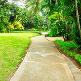 Beau parc vert avec le chemin d'enroulement Photo libre de droits