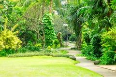 Beau parc vert avec le chemin d'enroulement Photos stock