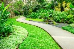 Beau parc vert avec le chemin d'enroulement Image stock