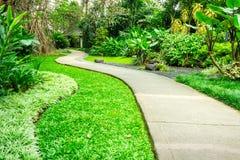 Beau parc vert avec le chemin d'enroulement Photo stock