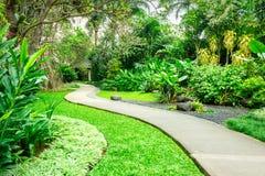 Beau parc vert avec le chemin d'enroulement Image libre de droits